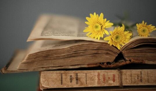 Книги, журналы, газеты