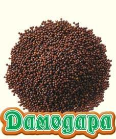 Горчица черная, Индия, 50 гр. - 1